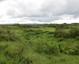 Moorlands, Mandeville